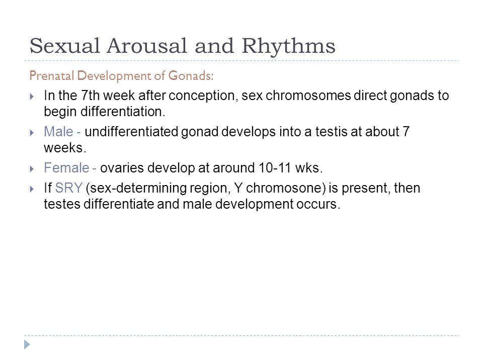 Testicular sexual arousal